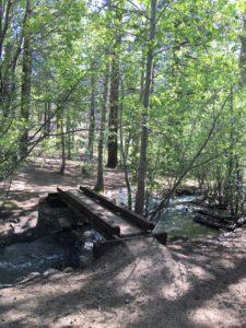 ガリーナ公園で里山散策 ④ Thomas Creek Trail at Galena Creek Reginal Park